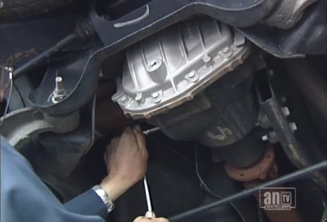 "Your Vehicle's ""Differential"""