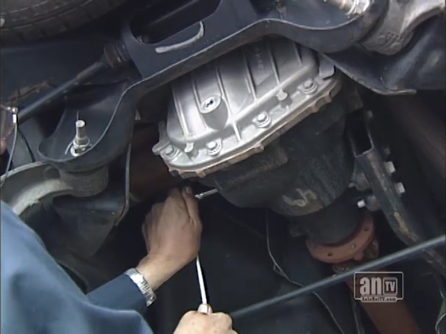 """Your Vehicle's """"Differential"""""""