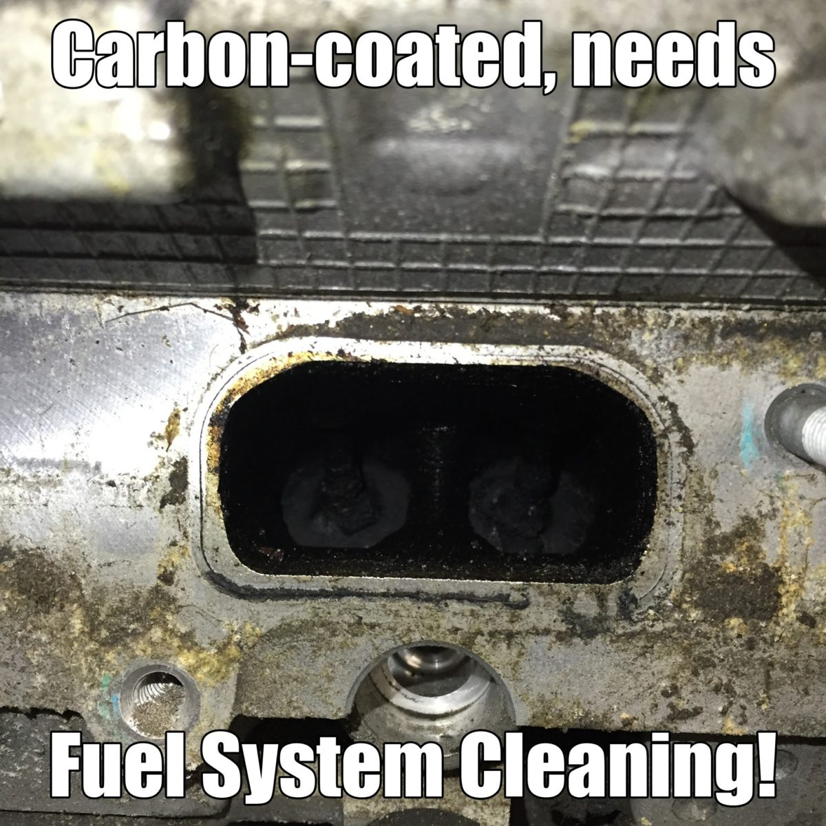 Fuel System Cleaning Calgary